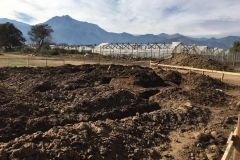 excavacion-AS